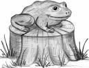 Скульптура - Лягушка-квакушка :: Заказать изготовление скульптур из дерева, Вы можете по телефонам: 8 (495) 783-65-09, 8 (495) 518-64-87