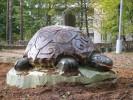 Скульптура - Черепаха (большая) :: Заказать изготовление скульптур из дерева, Вы можете по телефонам: 8 (495) 783-65-09, 8 (495) 518-64-87